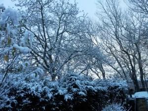 der erste Schnee macht sinnlich