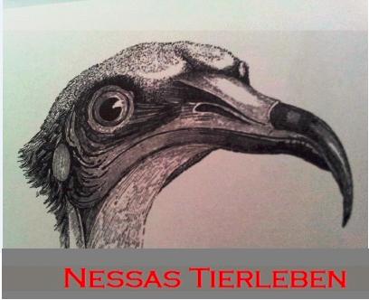 Nessas Tierleben band