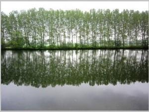 Post für Sie: Ein Foto vom April