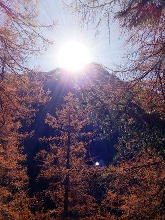Der November-Entzückblick kommt aus der Schweiz. Wir danken Brigitte K. für diesen optischen Gruß