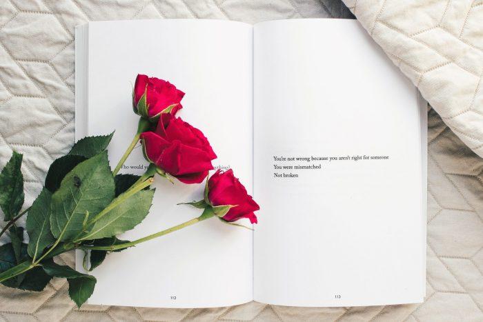 ein offnes  Buch und ein paar Rosen drauf