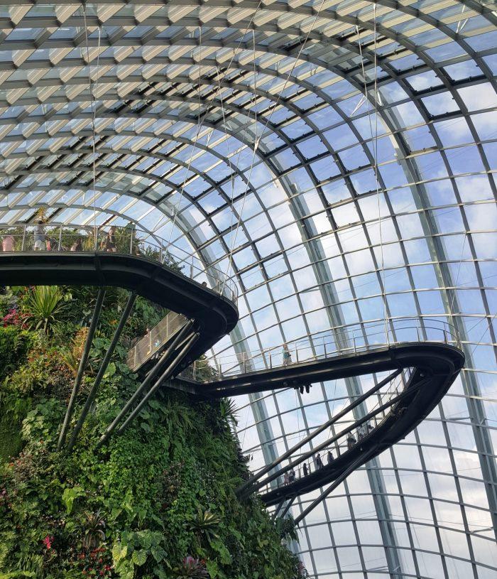 Blick ins Innere eines Gewächshauses mit tropischem Regenwald
