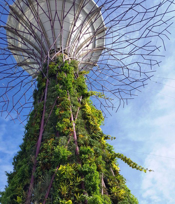 Turm, der außen mit Schlingplanzen bewachsen ist